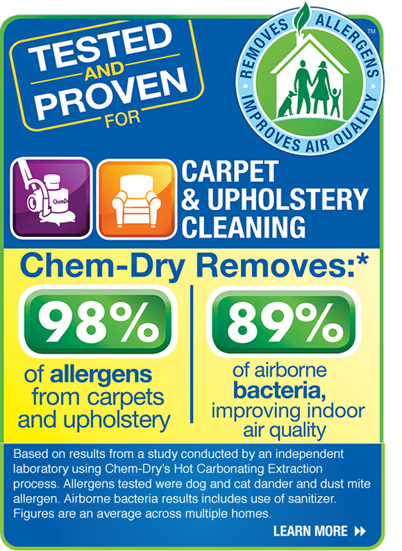Carpet Cleaning In Hilton Head Surrounding Chem Dry Of